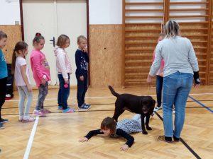 Canisterapie – pes záchranář, 2. třída