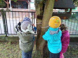 Hrajeme si s lany a provazy